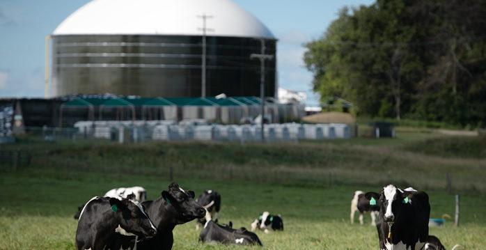 Biogas AMPLC