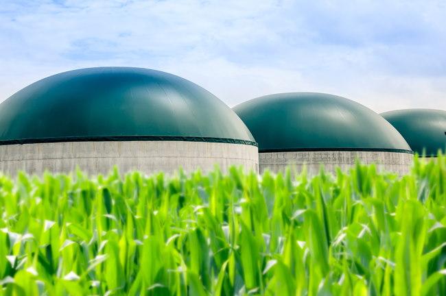 biomasse - Bioénergie